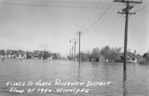 1950-fisher-st-north-riverview-district