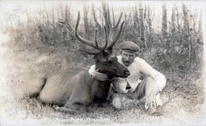 elk and zoo keeper