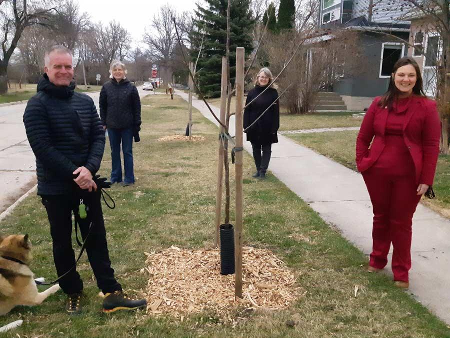 trees riverview planting group